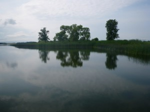 Oak Lake, Next to the Farm