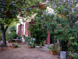 Cezanne's Studio