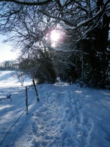 Country Walk near Stow