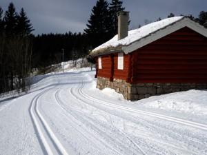 A Hut along the Trails