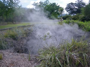 Boiling Thermal Pond in Kuirau Park