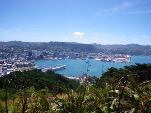Wellington Skyline